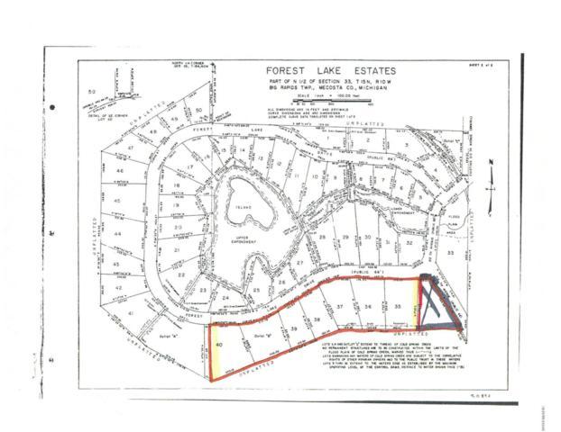 Lots 35-40 Forest Lake Drive, Big Rapids, MI 49307 (MLS #19028885) :: Deb Stevenson Group - Greenridge Realty