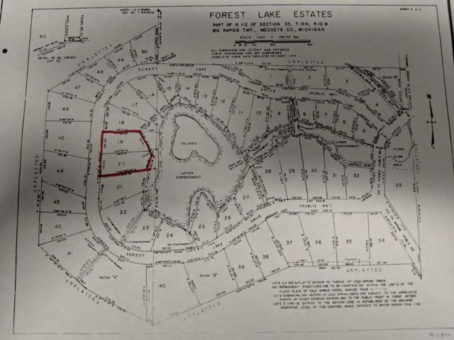 Lots 19&20 Forest Lake Drive, Big Rapids, MI 49307 (MLS #19028902) :: Deb Stevenson Group - Greenridge Realty