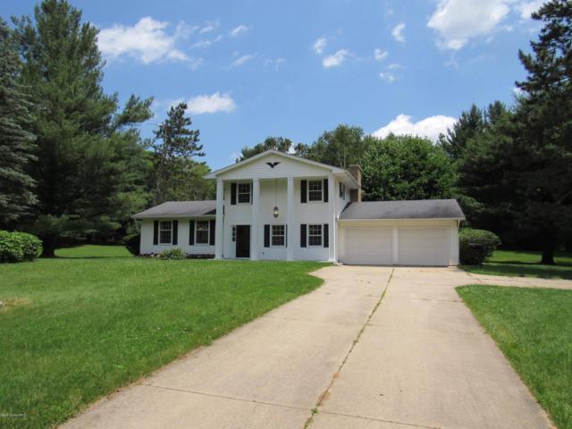 16266 15 Mile Road, Marshall, MI 49068 (MLS #19029578) :: Matt Mulder Home Selling Team