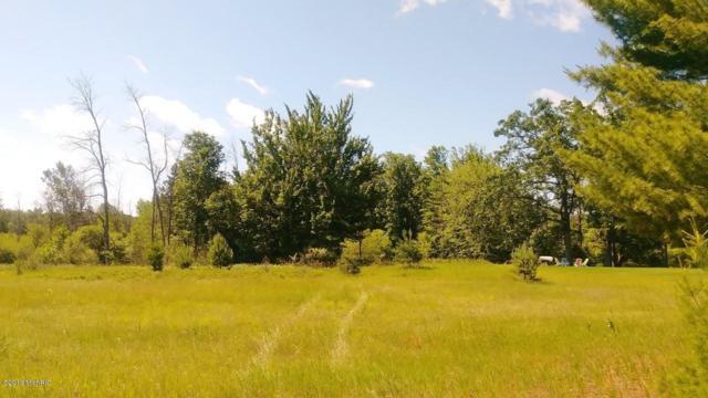 6685 Cedar Trace #10, Canadian Lakes, MI 49346 (MLS #19029657) :: Deb Stevenson Group - Greenridge Realty