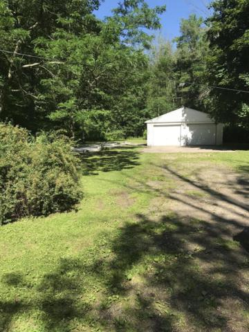14129 Ritchie Avenue, Cedar Springs, MI 49319 (MLS #19030370) :: Deb Stevenson Group - Greenridge Realty