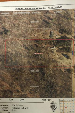 830 58th Street, Pullman, MI 49450 (MLS #19030539) :: Deb Stevenson Group - Greenridge Realty