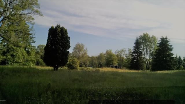 11638 E White Road, Ravenna, MI 49451 (MLS #19030569) :: JH Realty Partners