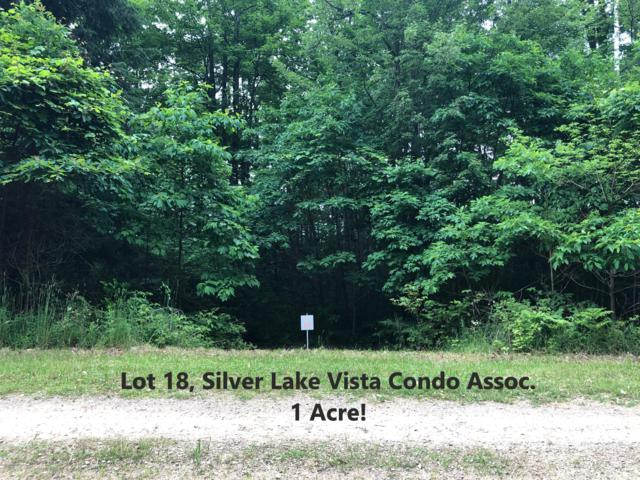 Lot 18, Silver Vista Boulevard, Mears, MI 49436 (MLS #19031007) :: Deb Stevenson Group - Greenridge Realty