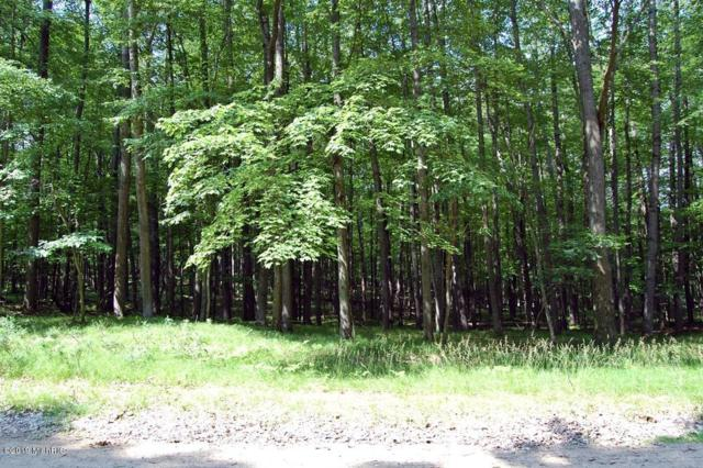 9967 Sweet Tree Lane, Canadian Lakes, MI 49346 (MLS #19031068) :: Deb Stevenson Group - Greenridge Realty