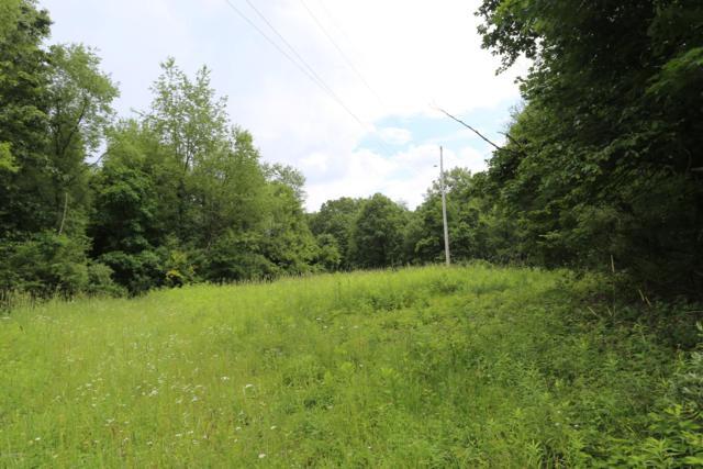 0 Collier Ave Avenue, Battle Creek, MI 49017 (MLS #19031392) :: Matt Mulder Home Selling Team