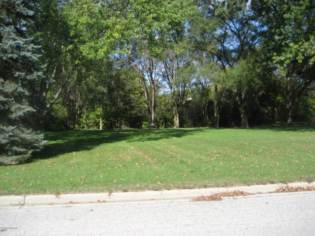 326 E Miller Street, Fremont, MI 49412 (MLS #19031470) :: Deb Stevenson Group - Greenridge Realty