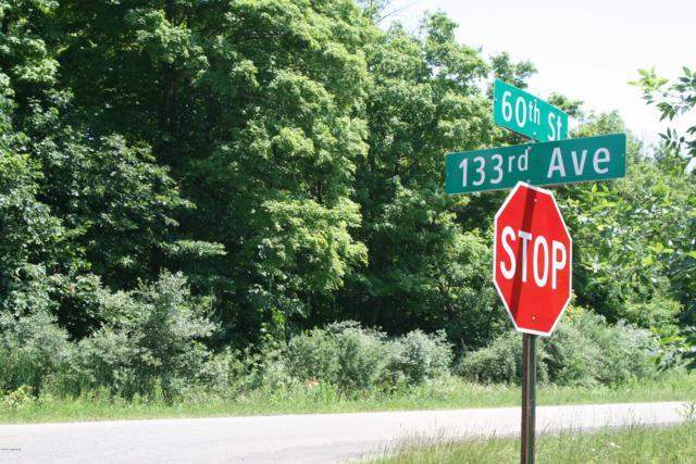 60th Street, Hamilton, MI 49419 (MLS #19031546) :: Deb Stevenson Group - Greenridge Realty