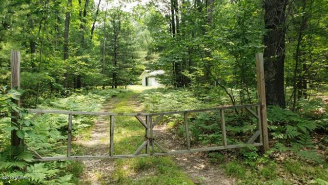 970 W 14 Mile Road, Bitely, MI 49309 (MLS #19031747) :: Deb Stevenson Group - Greenridge Realty