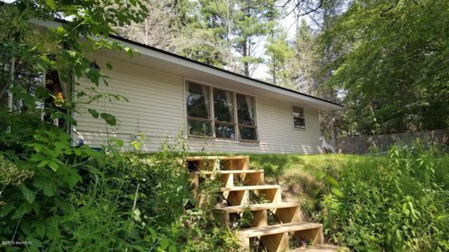 17815 Old Logging Road, Hersey, MI 49639 (MLS #19031887) :: Matt Mulder Home Selling Team