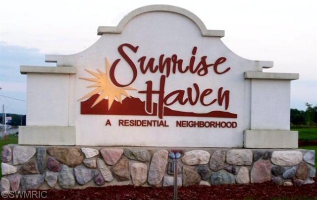 21186 Deans View #36, Big Rapids, MI 49307 (MLS #19032146) :: Matt Mulder Home Selling Team