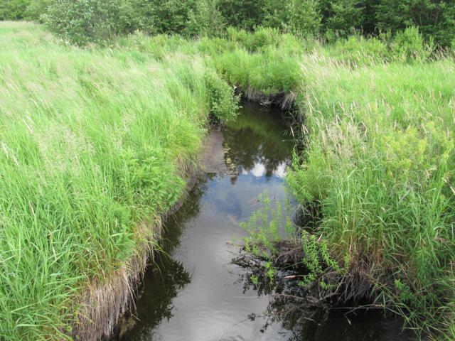 0000 Mackinaw Trail, Tustin, MI 49688 (MLS #19032233) :: CENTURY 21 C. Howard