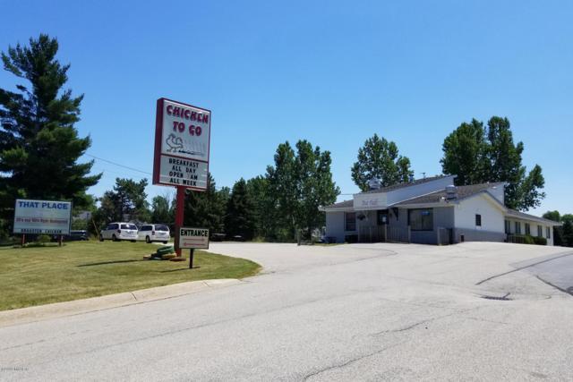 4133 W Polk Road, Hart, MI 49420 (MLS #19032643) :: Deb Stevenson Group - Greenridge Realty