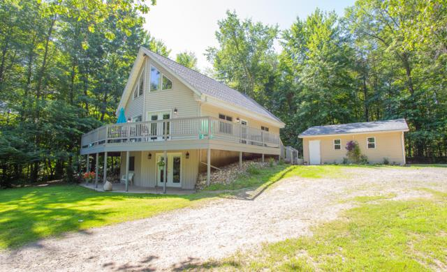 20678 M-60, Three Rivers, MI 49093 (MLS #19032716) :: Deb Stevenson Group - Greenridge Realty