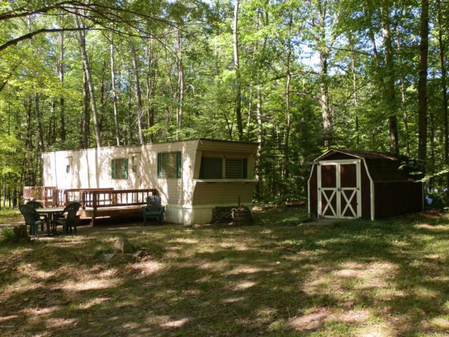 173 E Forest Trail, Leroy, MI 49655 (MLS #19032780) :: Deb Stevenson Group - Greenridge Realty