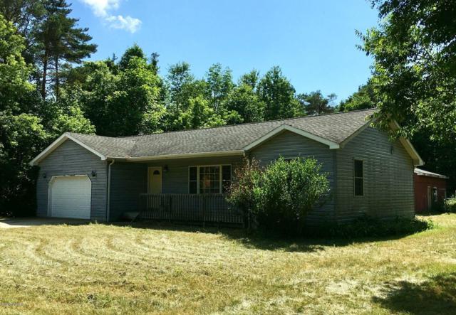 1315 Fitzgerald Avenue, Hesperia, MI 49421 (MLS #19033065) :: Deb Stevenson Group - Greenridge Realty
