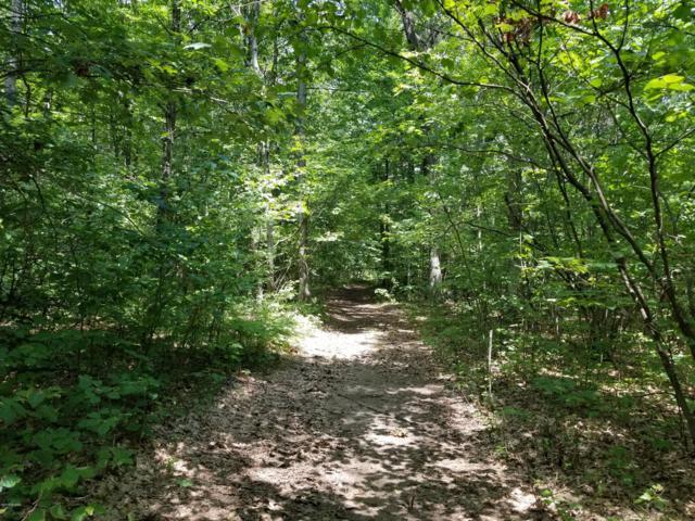 14156 Division Avenue NE, Cedar Springs, MI 49319 (MLS #19033068) :: Deb Stevenson Group - Greenridge Realty
