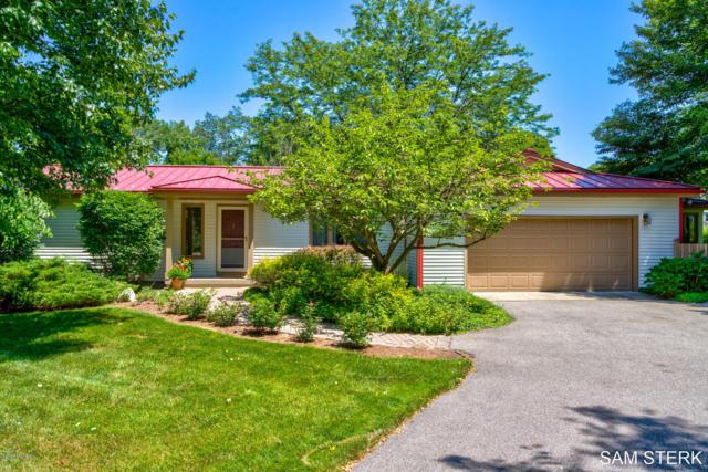 6464 Sunfish Lake Avenue NE, Rockford, MI 49341 (MLS #19033115) :: JH Realty Partners