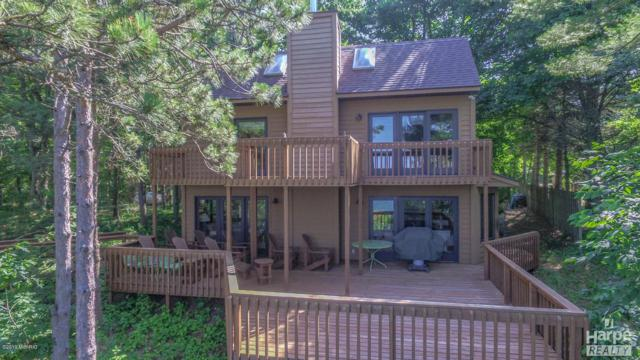 6317 S Whiskey Creek Trail Trail, New Era, MI 49446 (MLS #19033183) :: Deb Stevenson Group - Greenridge Realty