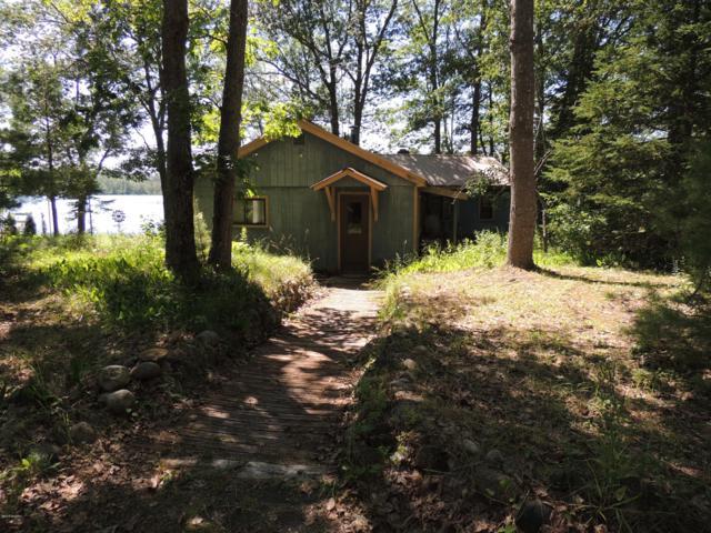 10144 N Ocqueoc Lk Rd, Ocqueoc, MI 49759 (MLS #19033364) :: Deb Stevenson Group - Greenridge Realty