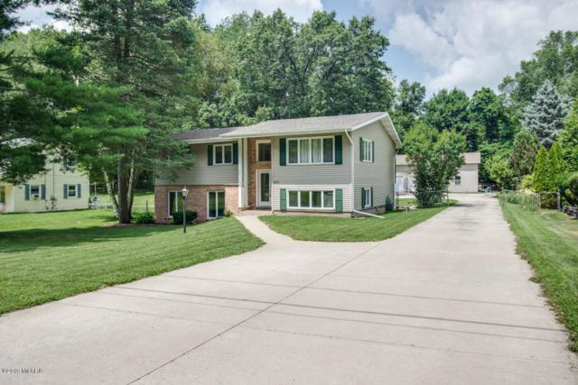 225 Highfield Road, Marshall, MI 49068 (MLS #19033934) :: Matt Mulder Home Selling Team