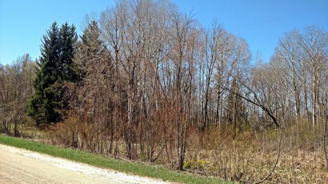 S Tuttle (2.56 Acres) Road, Custer, MI 49405 (MLS #19033992) :: CENTURY 21 C. Howard