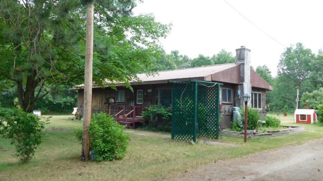 5924 Oak Avenue, Newaygo, MI 49337 (MLS #19034125) :: Deb Stevenson Group - Greenridge Realty