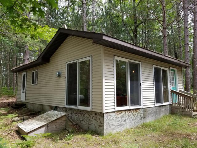 14158 Woodpecker Lane, Leroy, MI 49655 (MLS #19034159) :: Matt Mulder Home Selling Team
