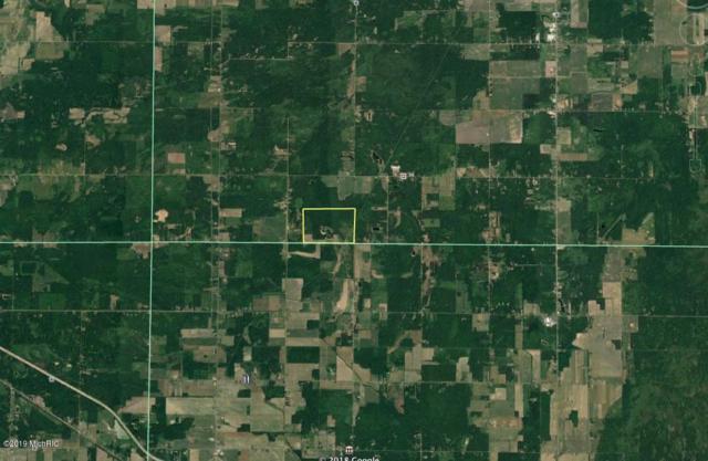 4700 Coolidge Road, Beaverton, MI 48612 (MLS #19034624) :: CENTURY 21 C. Howard