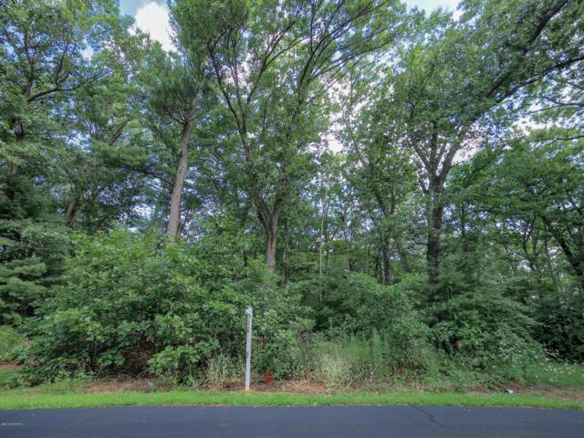 Wildwood Drive #3, Allegan, MI 49010 (MLS #19035823) :: Deb Stevenson Group - Greenridge Realty