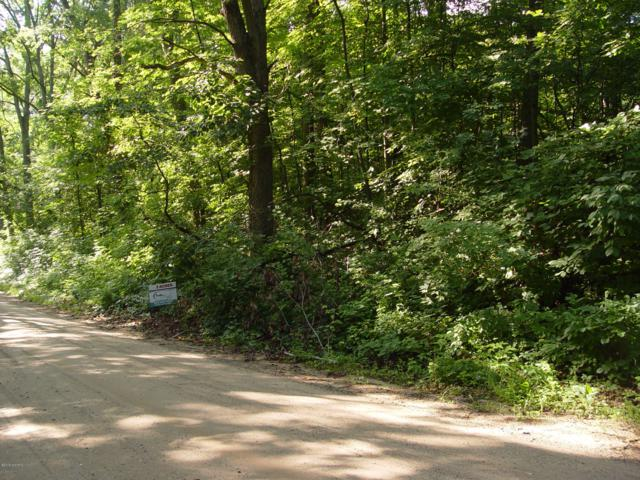 4736 E Sager Road, Hastings, MI 49058 (MLS #19035945) :: CENTURY 21 C. Howard