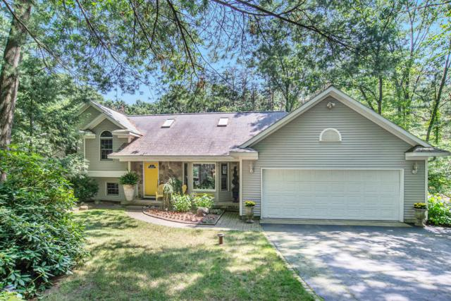 200 Tia Trail SE, Lowell, MI 49331 (MLS #19036513) :: JH Realty Partners