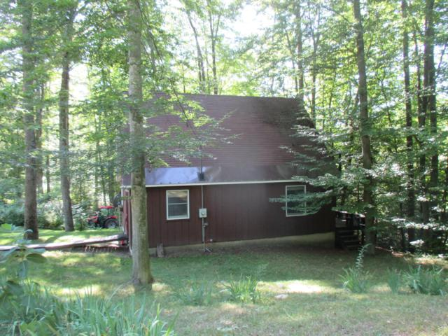 7066 Darlington Lake Rd Road, Hesperia, MI 49421 (MLS #19036939) :: JH Realty Partners
