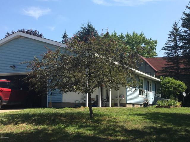 433 Hillside Court, Reed City, MI 49677 (MLS #19037025) :: JH Realty Partners