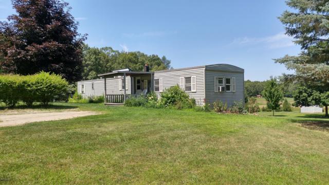 8802 Peck Lake Road, Saranac, MI 48881 (MLS #19037405) :: JH Realty Partners