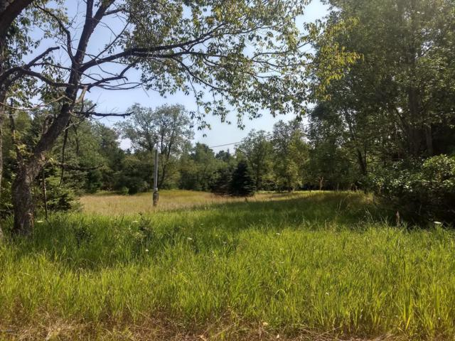1465 E Koenig Road, Free Soil, MI 49411 (MLS #19037950) :: Deb Stevenson Group - Greenridge Realty