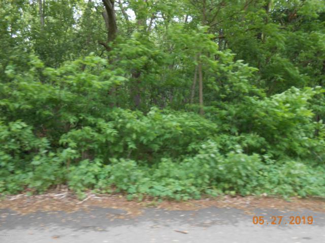 Lynn 1 Drive, Battle Creek, MI 49037 (MLS #19038073) :: CENTURY 21 C. Howard
