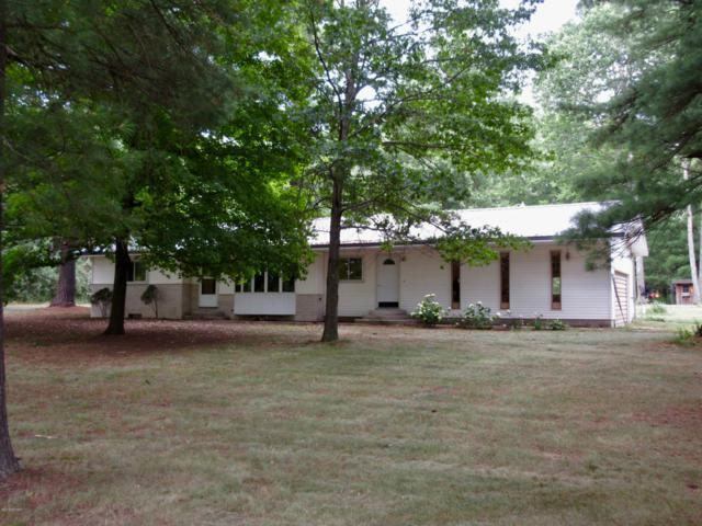 6851 S Coldwater Road, Blanchard, MI 49310 (MLS #19038207) :: JH Realty Partners
