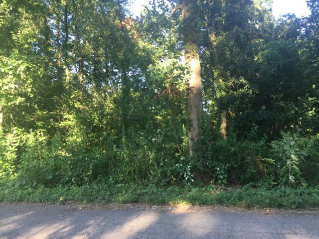 Island Drive Lots 1 & 2, Edwardsburg, MI 49112 (MLS #19038278) :: Deb Stevenson Group - Greenridge Realty