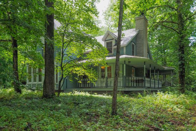 66543 26th Street, Lawton, MI 49065 (MLS #19038323) :: Matt Mulder Home Selling Team