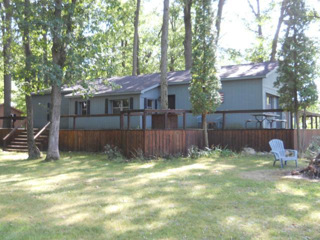 1646 N Lake Rd., Stanton, MI 48888 (MLS #19038371) :: CENTURY 21 C. Howard