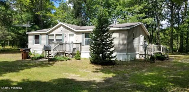 576 W Airpark, Luther, MI 49656 (MLS #19038531) :: CENTURY 21 C. Howard