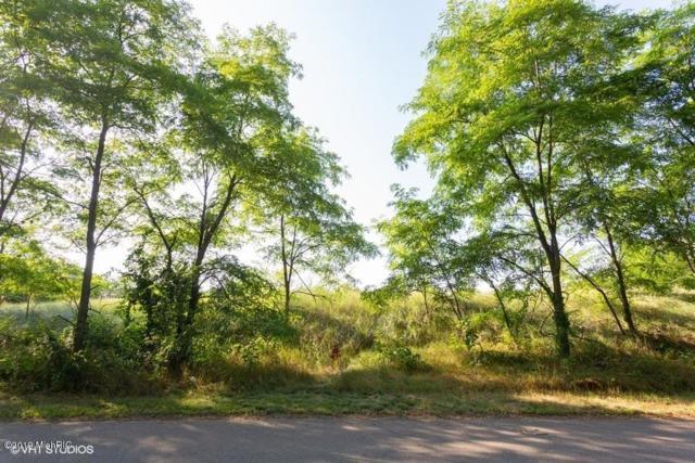 51220 E Arnold Drive, New Buffalo, MI 49117 (MLS #19039287) :: CENTURY 21 C. Howard