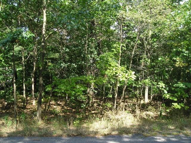 19589 Oak Drive, New Buffalo, MI 49117 (MLS #19044584) :: JH Realty Partners
