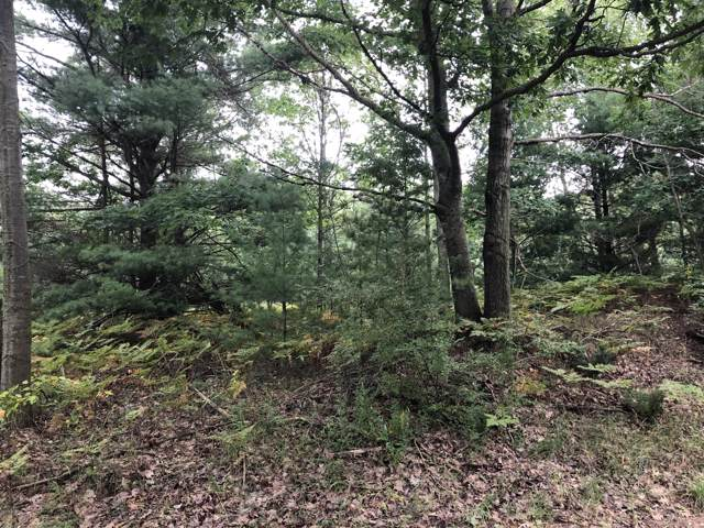 Lot 3 Harrison Road, Mears, MI 49436 (MLS #19044702) :: Deb Stevenson Group - Greenridge Realty