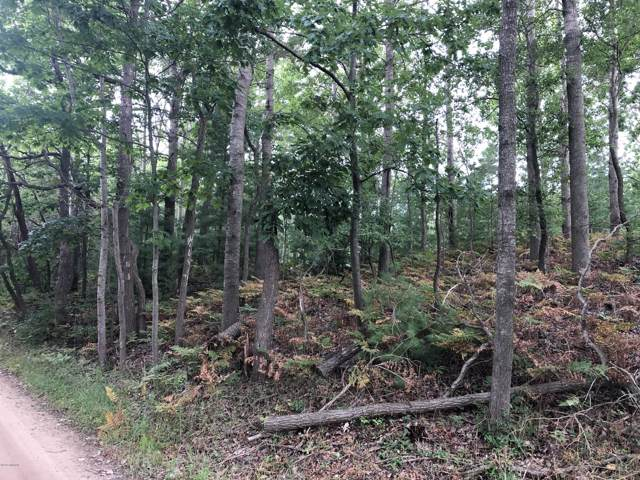 Lot 2 Harrison Road, Mears, MI 49436 (MLS #19044705) :: Deb Stevenson Group - Greenridge Realty