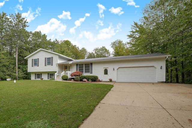 6349 Somerset Lane, Cadillac, MI 49601 (MLS #19044724) :: JH Realty Partners