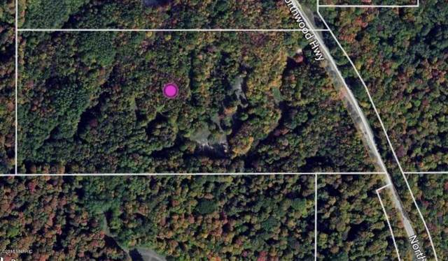 18.75 acre M-22, Arcadia, MI 49613 (MLS #19044748) :: Matt Mulder Home Selling Team