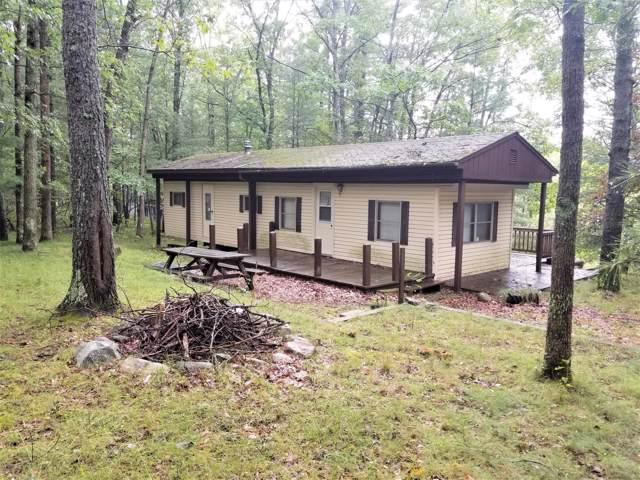 5565 E Marquette Trail, Chase, MI 49623 (MLS #19044893) :: CENTURY 21 C. Howard