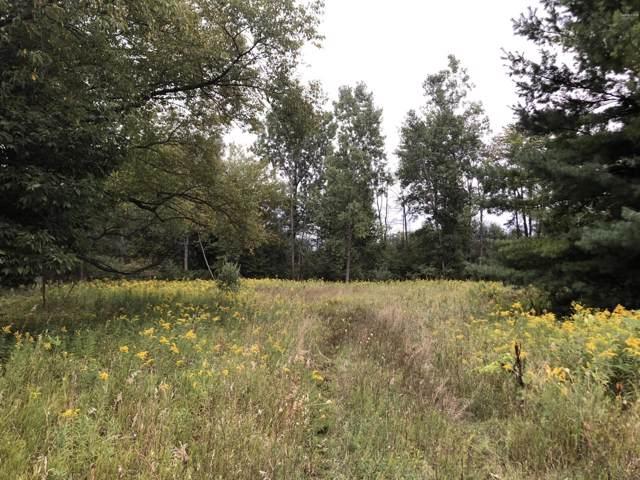 5051 18 Mile Road NE Parcel C, Cedar Springs, MI 49319 (MLS #19045297) :: JH Realty Partners